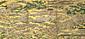 豊国祭礼図屏風