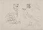 日光山艸木花鳥図画帖 6 模写「沙羅樹/慈悲鳥」『日光山志』第4巻より