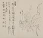 日光山艸木花鳥図画帖 7 模写「白根葵」『日光山志』第4巻より