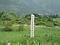 箱根仙石原湿原植物群落