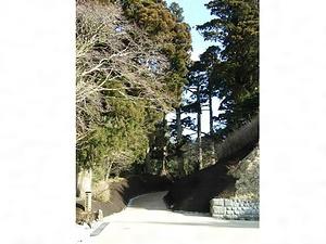 箱根旧街道 はこねきゅうかいどう