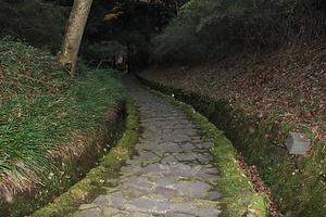 恩賜箱根公園 おんしはこねこうえん